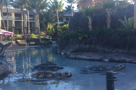 While Away The Days at This Hotel Pool in Wailea