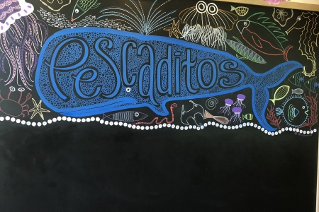 Inside the Pescaditos Kids Club at Chileno Bay Resort