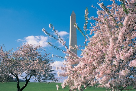 5 Great Hotels for Families in Washington, D.C.