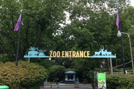 Trips + Giggles Favorite Places: The Bronx Zoo